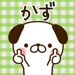 """My dog""""Kazu"""""""