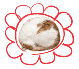 Brown tabby cat and kitten sticker #13909627