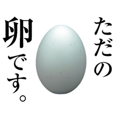 Is the only of the egg