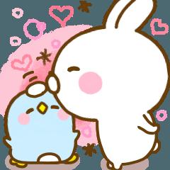 Rabbit Usahina friendly 2