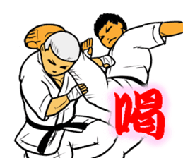 Karate-Man 3 sticker #13934511