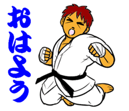 Karate-Man 3 sticker #13934514