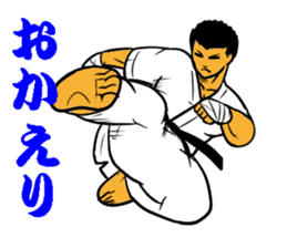 Karate-Man 3 sticker #13934520
