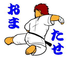 Karate-Man 3 sticker #13934546