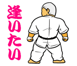 Karate-Man 3 sticker #13934548