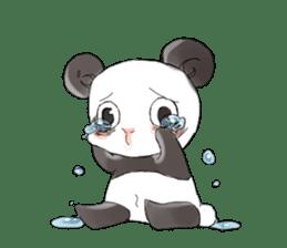 Naughty cute panda sticker #13945810
