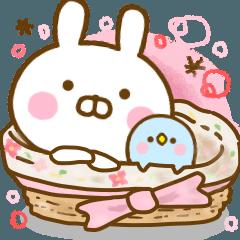 Rabbit Usahina Cute Adult