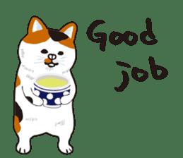 pokefasu english Sticker sticker #14097543