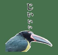 Real Bird sticker #14106350
