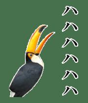 Real Bird sticker #14106360