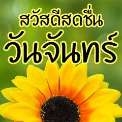 สติ๊กเกอร์ไลน์ สวัสดีวันจันทร์ ดอกไม้ ทักทาย อวยพร