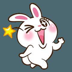 Molly the rabbit 3