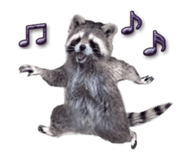 Naughty raccoon(English) sticker #14156396