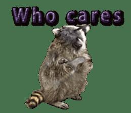 Naughty raccoon(English) sticker #14156403