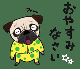Pretty Pug!4 sticker #14165628