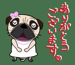 Pretty Pug!4 sticker #14165629