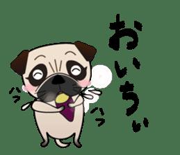Pretty Pug!4 sticker #14165650