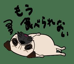 Pretty Pug!4 sticker #14165652