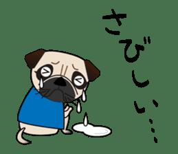 Pretty Pug!4 sticker #14165658