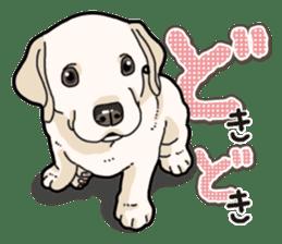 Banana's puppy Labrador retriever sticker #14166415