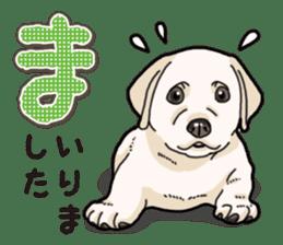 Banana's puppy Labrador retriever sticker #14166418