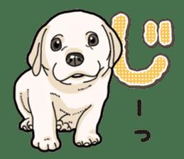 Banana's puppy Labrador retriever sticker #14166421