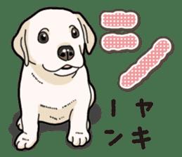 Banana's puppy Labrador retriever sticker #14166422
