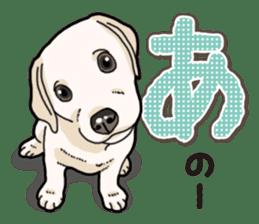 Banana's puppy Labrador retriever sticker #14166424