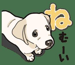 Banana's puppy Labrador retriever sticker #14166426