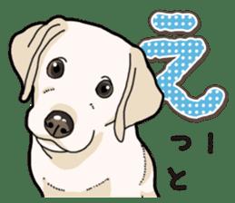 Banana's puppy Labrador retriever sticker #14166428