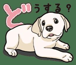 Banana's puppy Labrador retriever sticker #14166429