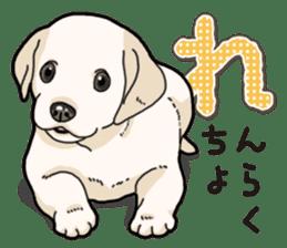 Banana's puppy Labrador retriever sticker #14166436