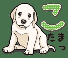 Banana's puppy Labrador retriever sticker #14166440