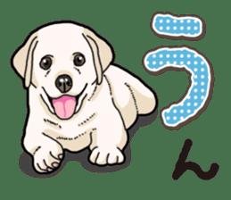 Banana's puppy Labrador retriever sticker #14166445