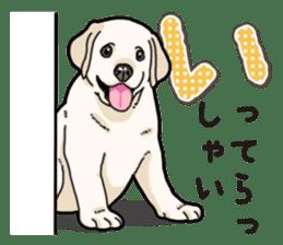 Banana's puppy Labrador retriever sticker #14166447