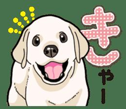 Banana's puppy Labrador retriever sticker #14166449