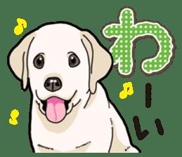 Banana's puppy Labrador retriever sticker #14166450