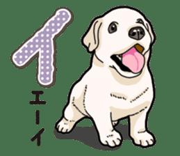 Banana's puppy Labrador retriever sticker #14166451