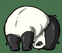PANDA!! PANDA!! sticker #14198145