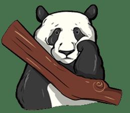 PANDA!! PANDA!! sticker #14198161