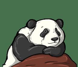 PANDA!! PANDA!! sticker #14198164
