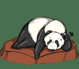 PANDA!! PANDA!! sticker #14198167