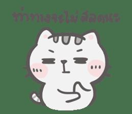 Mr. bear and his cutie cat 3 sticker #14206737
