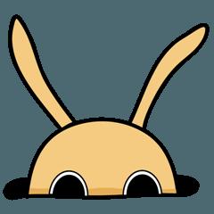 Jiao rabbit
