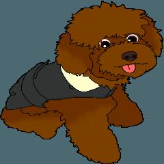 Brownie - The Princess Dog