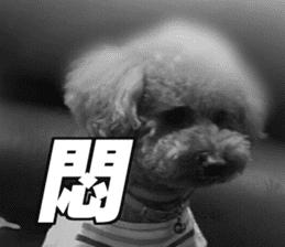 I am Pupu 1 sticker #14266928