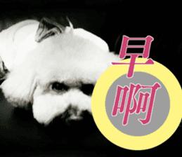 I am Pupu 1 sticker #14266936