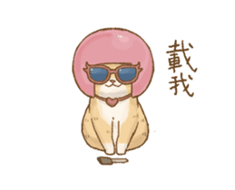 Cat's Lifestyle-Move!(Chinese Ver.) sticker #14267886