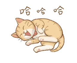 Cat's Lifestyle-Move!(Chinese Ver.) sticker #14267893