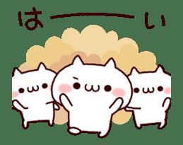 Cat organizations animation! sticker #14284444